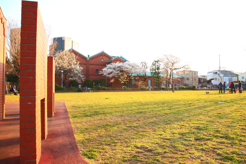 醸造試験所跡地公園 桜