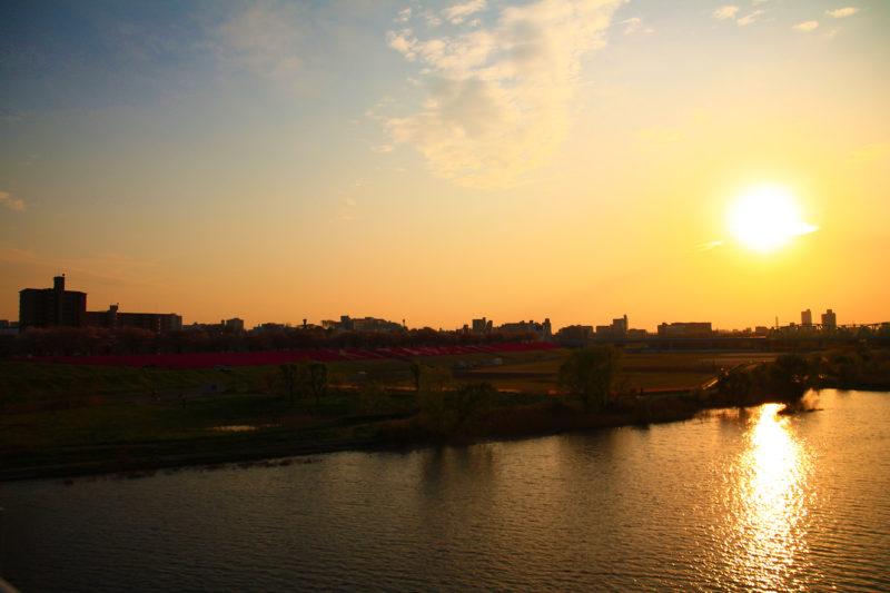 荒川大橋から見た荒川赤羽桜堤緑地の桜