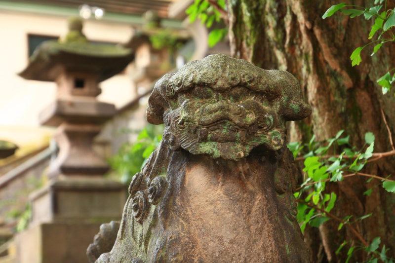 市杵島神社 狛犬