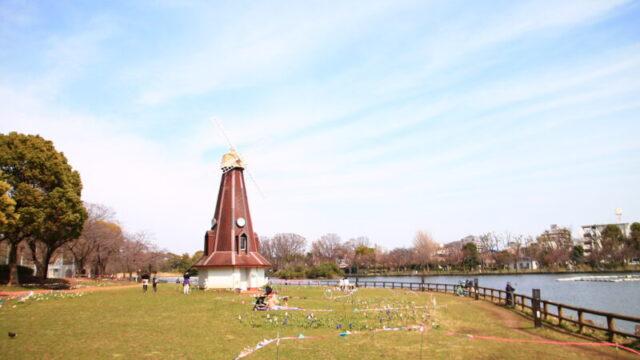 浮間公園 チューリップガーデン