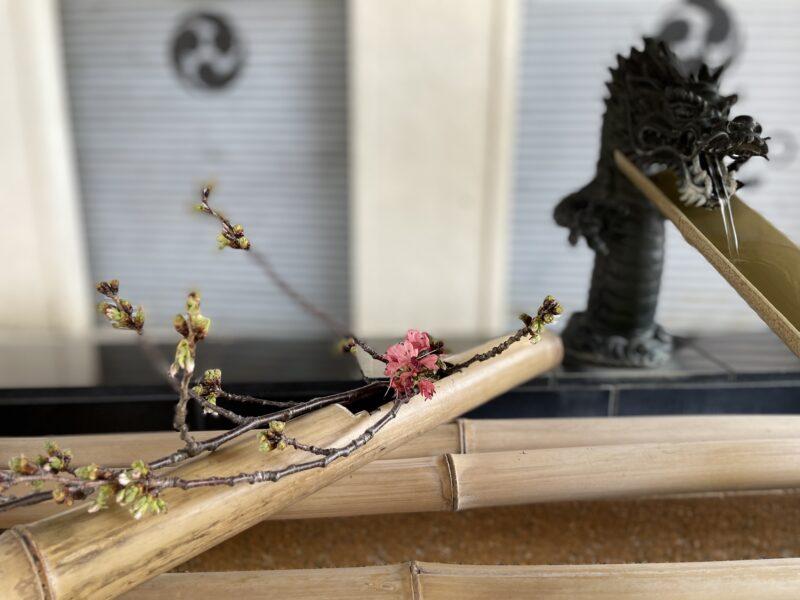 手水舎 七社神社