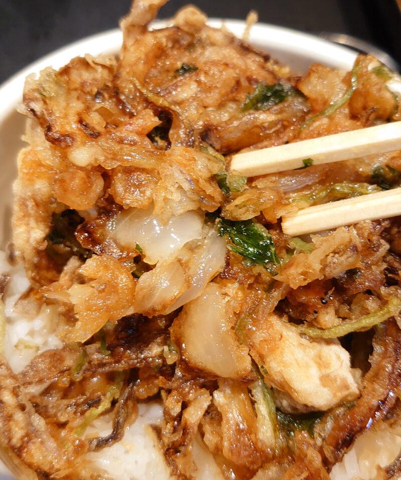 禅味 寿 かき揚げ丼セット
