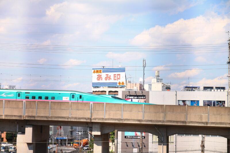 田端駅南口 坂道 紫陽花