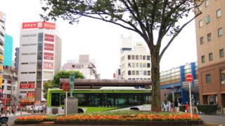 赤羽駅東口 ロータリー前の花壇